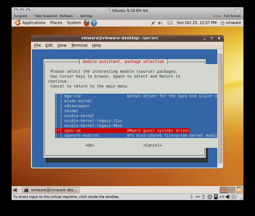 Ubuntu 9 10 In VMware - Updated